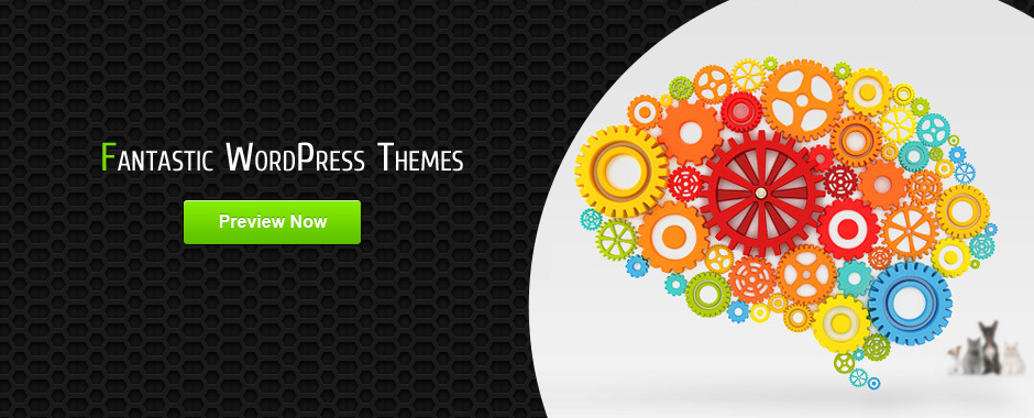 Fantastic WordPress Themes