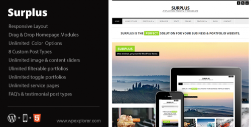 34_Surplus - Minimal Responsive Business WP Theme