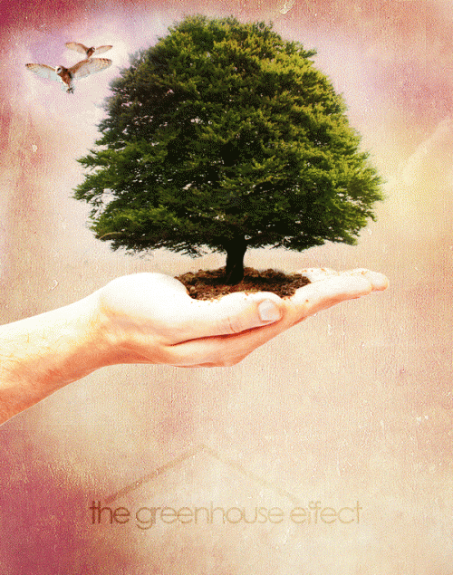 6_Create a Nature Inspired Photo Manipulation in Photoshop