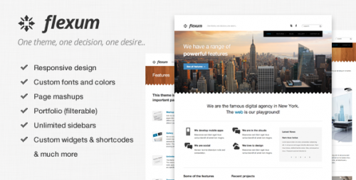 14_Flexum - A Flexible and Responsive WordPress Theme