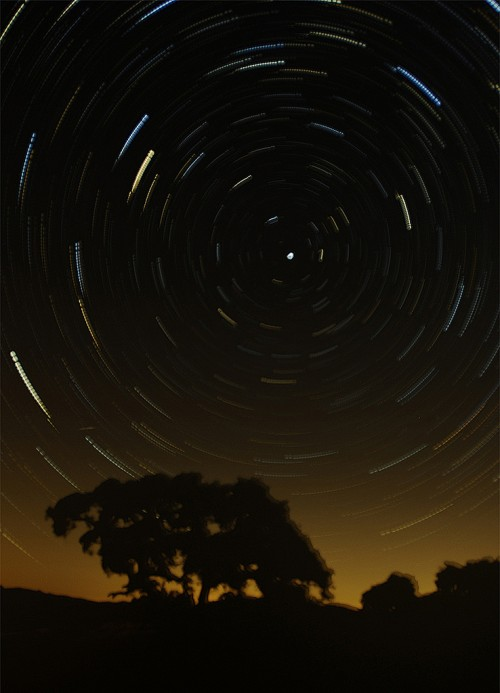 19_Star Trails over Dinosaur Point