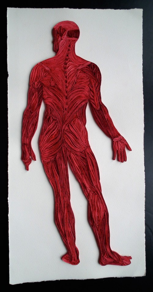 1_Quilled Paper Anatomy