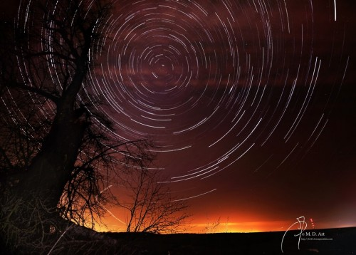 22_Star Trails and Lime Tree