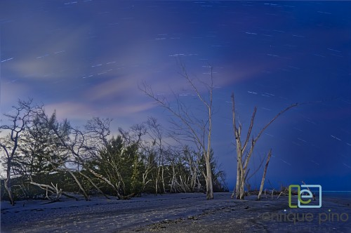 24_Star Trail