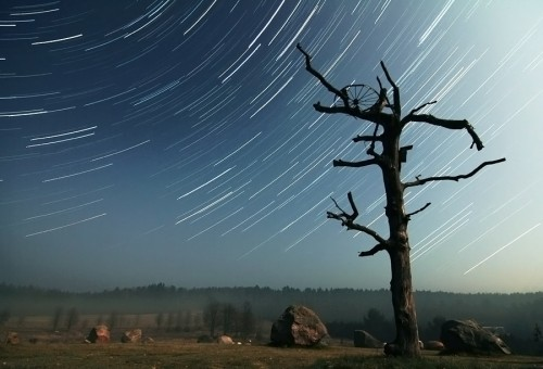 25_Star Trails