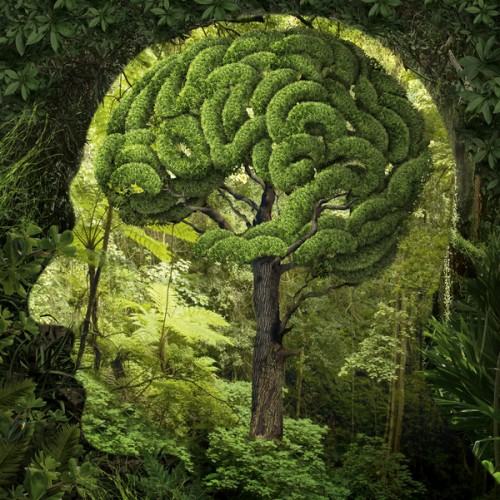2_Surreal Artworks by Igor Morski