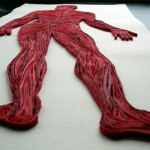 3_Quilled Paper Anatomy