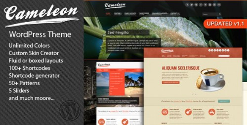 47_Cameleon Multipurpose WordPress Theme