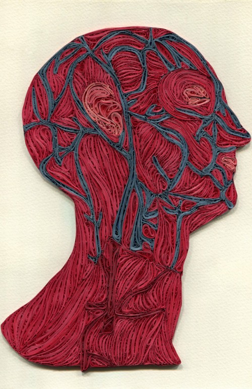 5_Quilled Paper Anatomy