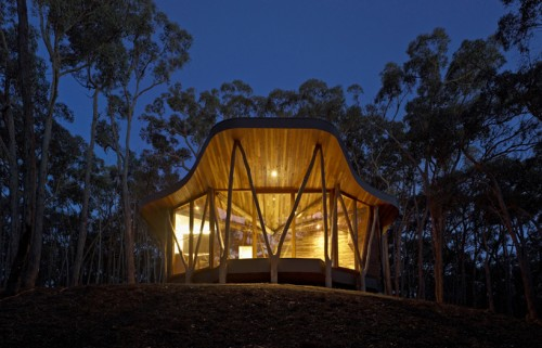 2_Trunk House by Paul Morgan Architects