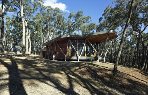 4_Trunk House by Paul Morgan Architects