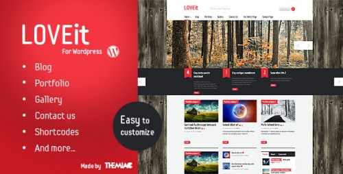 10_Awesome Wordpress Magazine, Blog Theme - LOVEit