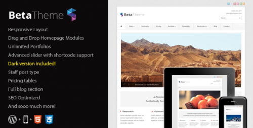 24_Beta - Clean Corporate WordPress Theme