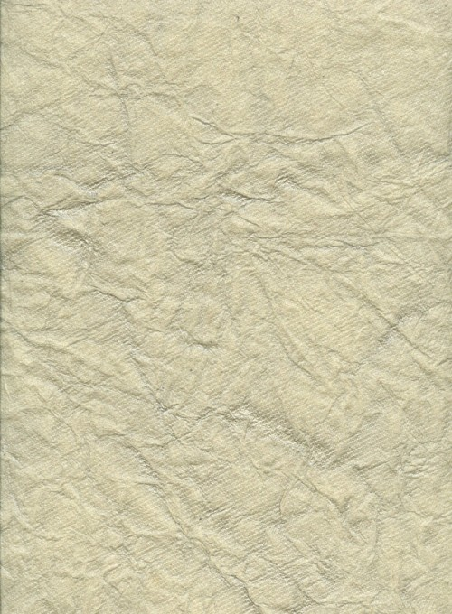 7_Crinkled Paper Texture