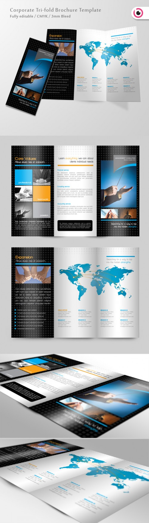19_Consulting Trifold Brochure