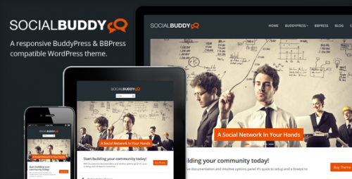 3_Social Buddy - WordPress & BuddyPress Theme